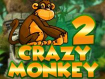 Играть с бонусом в Crazy Monkey 2