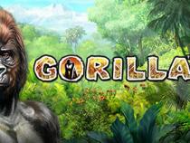Играть на зеркале в Gorilla